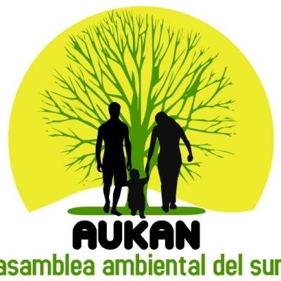 logo aukan